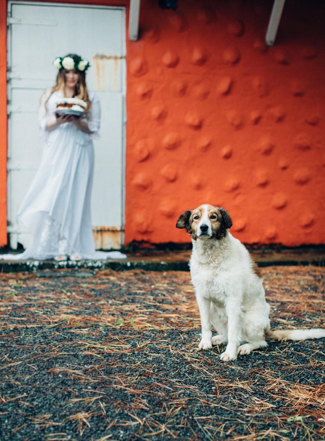 Ashton and Jake wedding  20
